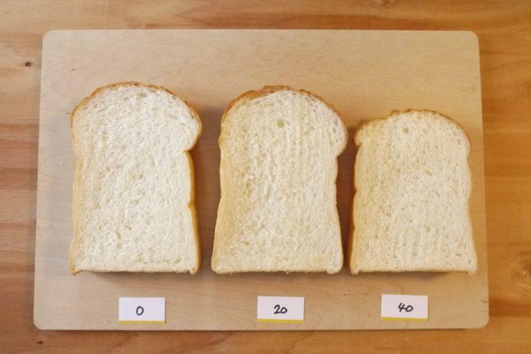 比較実習 ホイロ 食パン 発酵